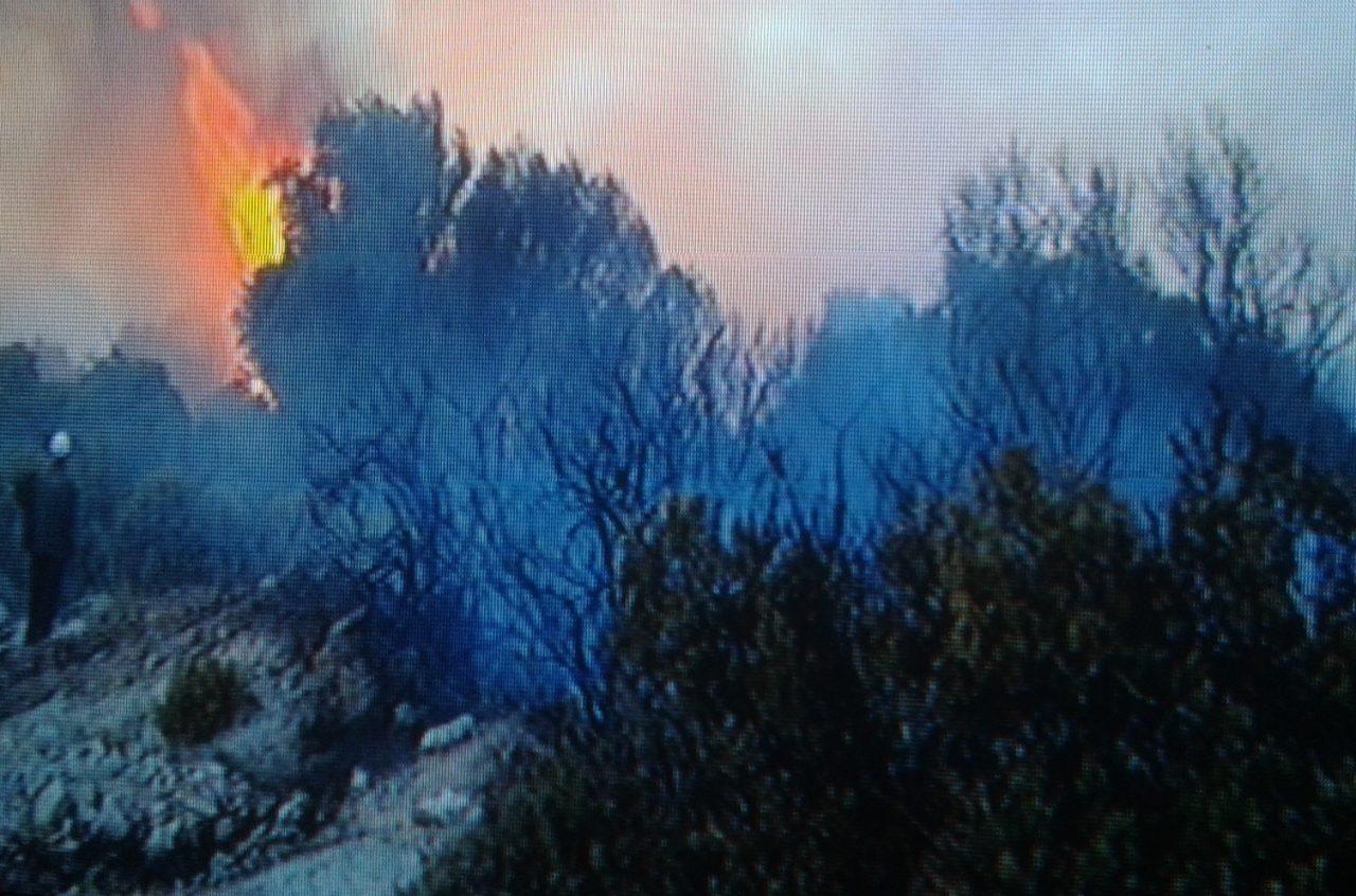 موسم الحرائق : حريق غابة حوزة السملاليين تمت السيطرة عليه