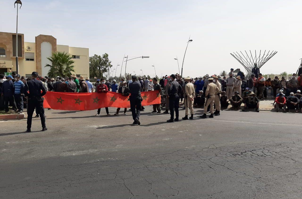 استياء كبير من طرف الحرفيين في قطاع الماشية ومطالب بالرجوع الى سوق ثلاثاء سيدي بنور